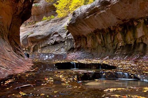 Экскурсия в национальный парк Zion