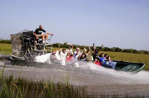 Экскурсия в национальный парк Everglades  заповедник аллигаторов с прогулкой на лодке