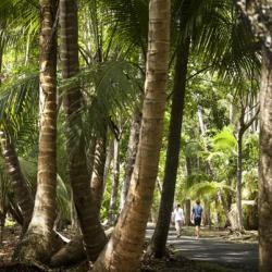 Достопримечательности и интересные места в Пуэрто-Рико